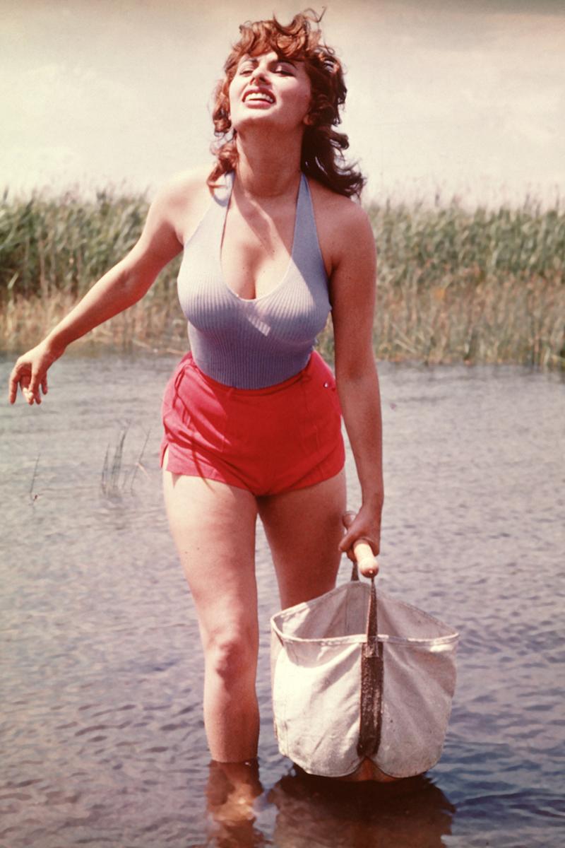 Софи Лорен, 1955.