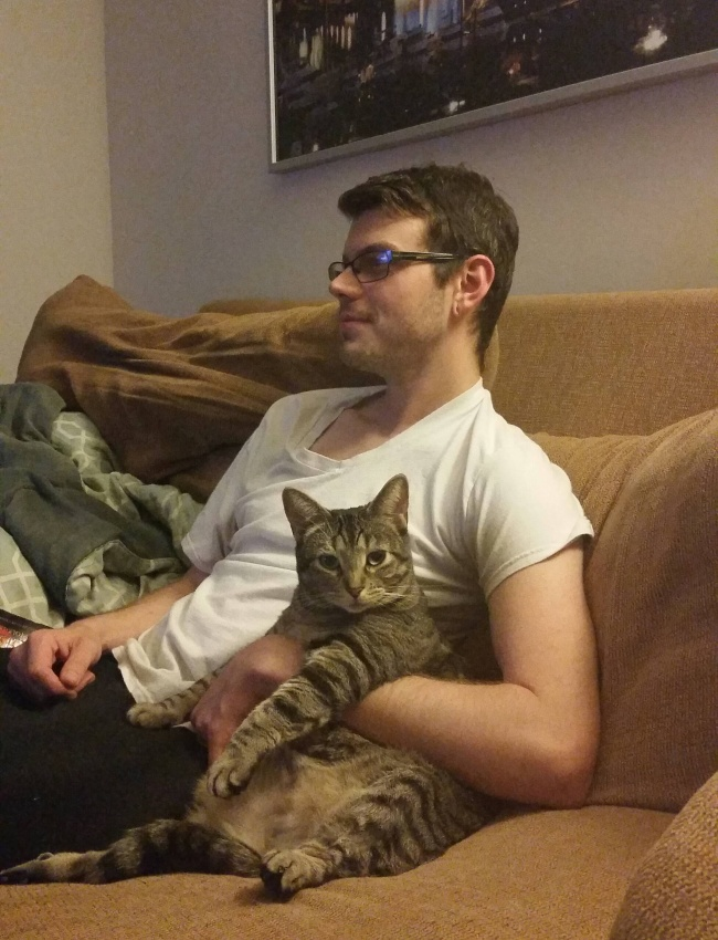 © imgur.com   Инет, кошкам никапельки нестыдно  Напротив, они гордятся содеянным