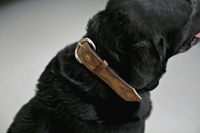 Если выхотите для своего пса стильный кожаный ошейник, совсем необязательно покупать его заогромны