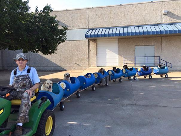 80-летний мужчина сконструировал этот поезд для спасенных собак, которые раньше были бродячими.
