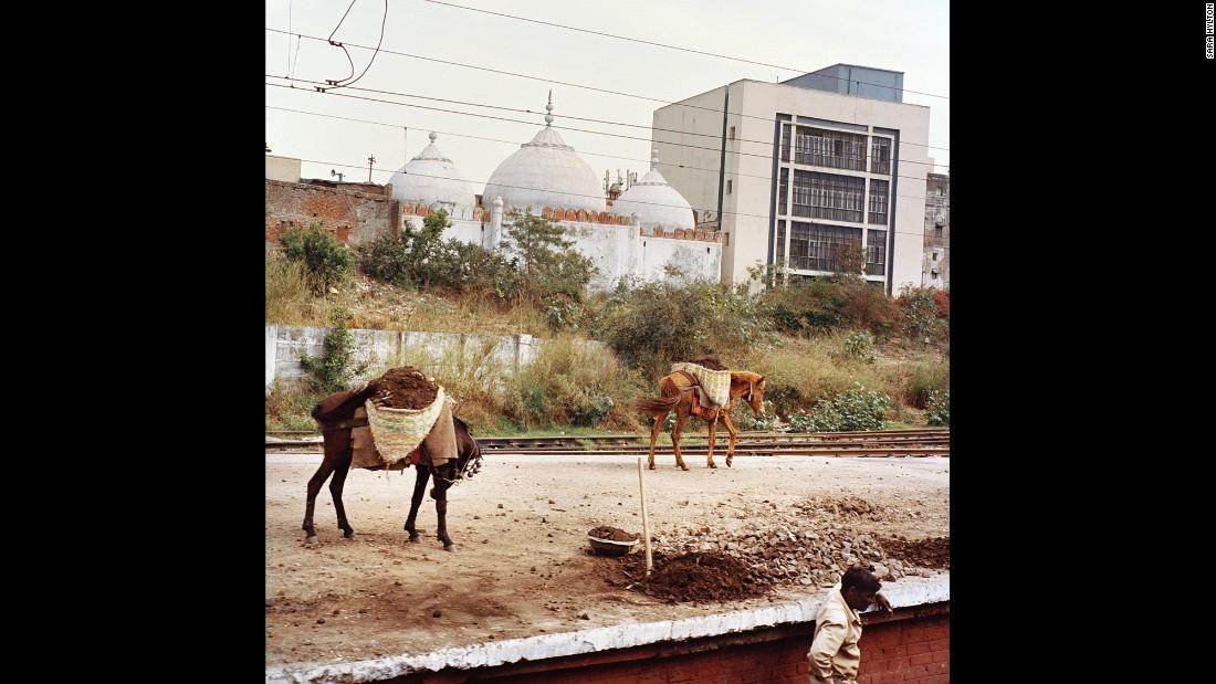 Рабочий в сельской местности штата Пенджаб.