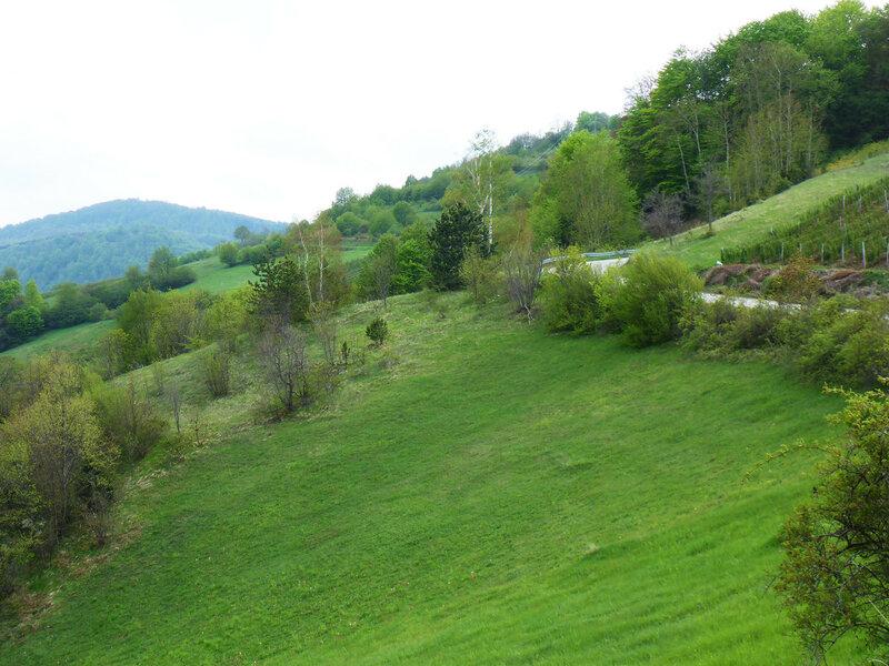 пейзаж в горах в сербии