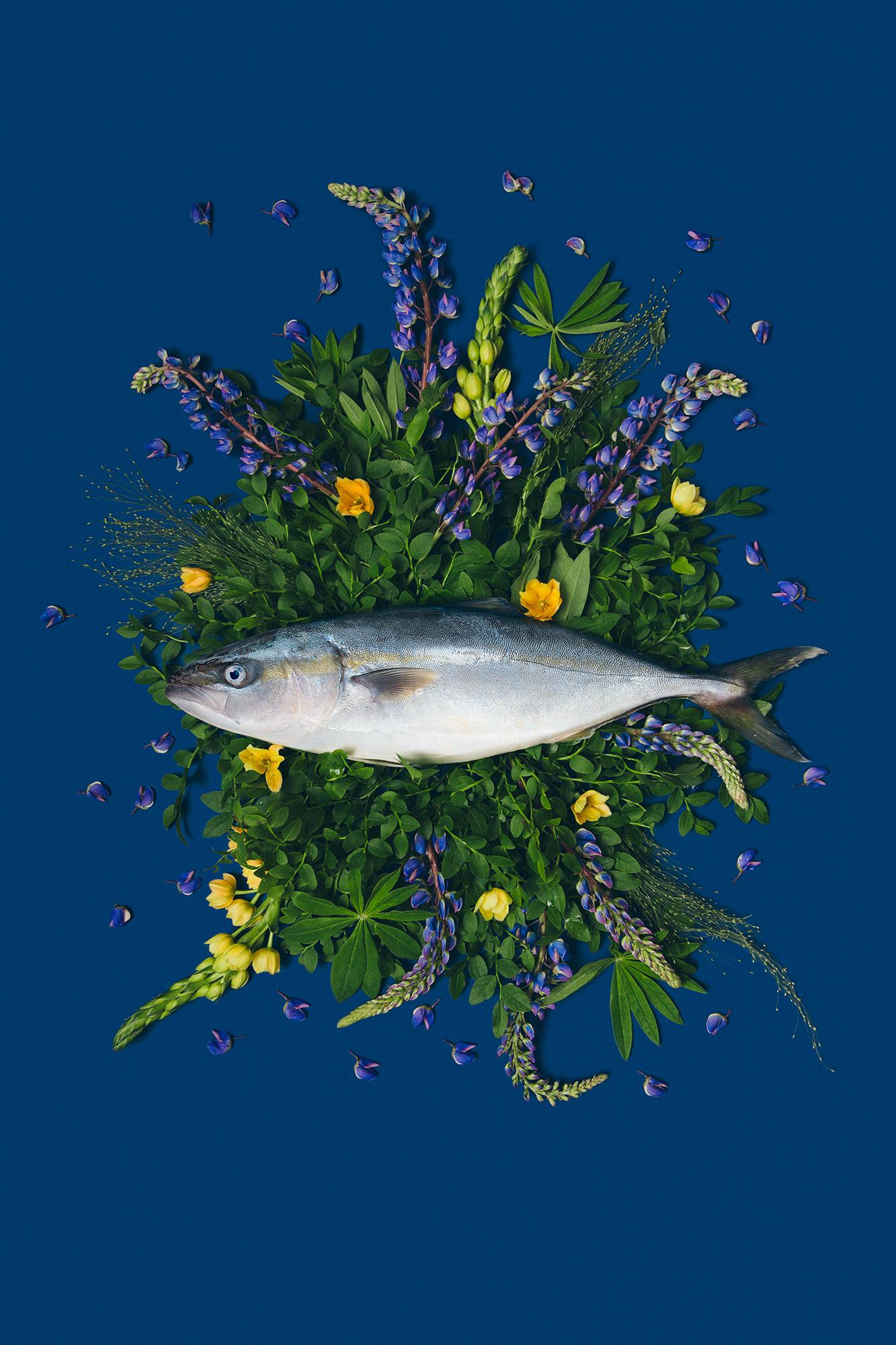 Fish&Flowers / фото Юлия Потато