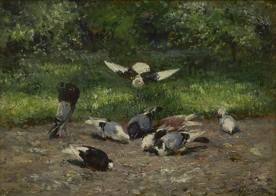Pigeons in the park, 1895.