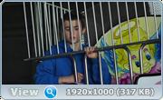 http//img-fotki.yandex.ru/get/1032407/217340073.14/0_20cf96_ff083c05_orig.png