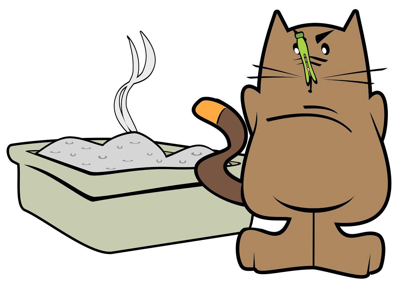 неприятный запах кошачьей мочи