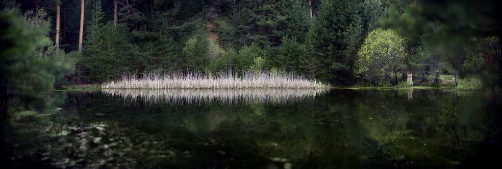 http://cristinaroblesphotography.com