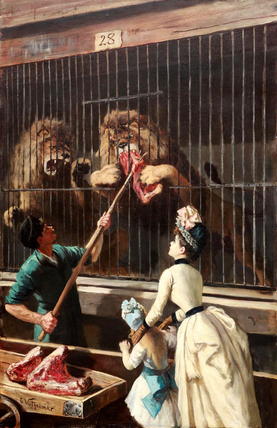 Løvene mates.