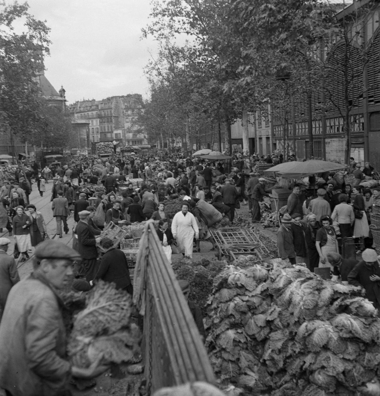 12. Выбор овощей для продажи варьируется в зависимости от сезона