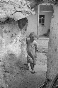 Портрет маленькой девочки, выглядывающей из-за стены