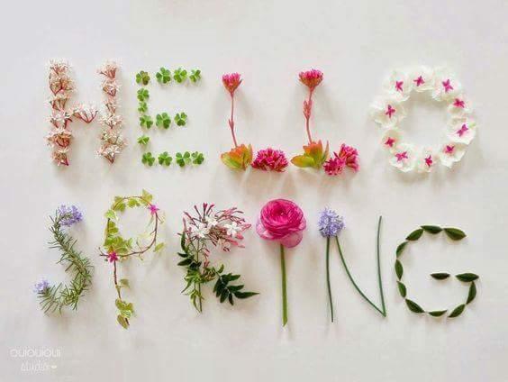 весна-3.jpg