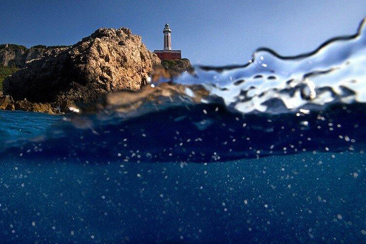 фото границы воды и неба подцветочники представляют