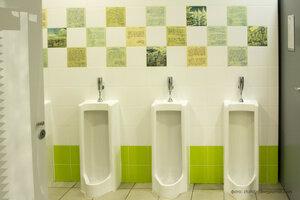 Самый научно-популярный туалет России