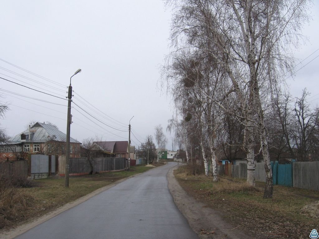 Улица Заречная в Тростянце