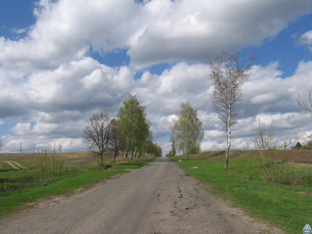 Дорога в Белку