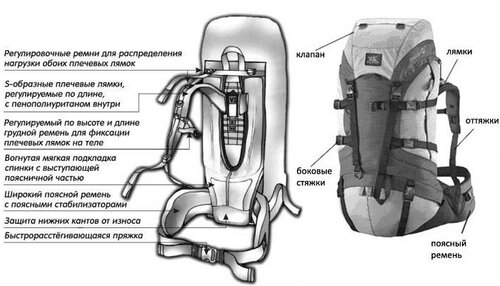 как выбирать рюкзак для похода?