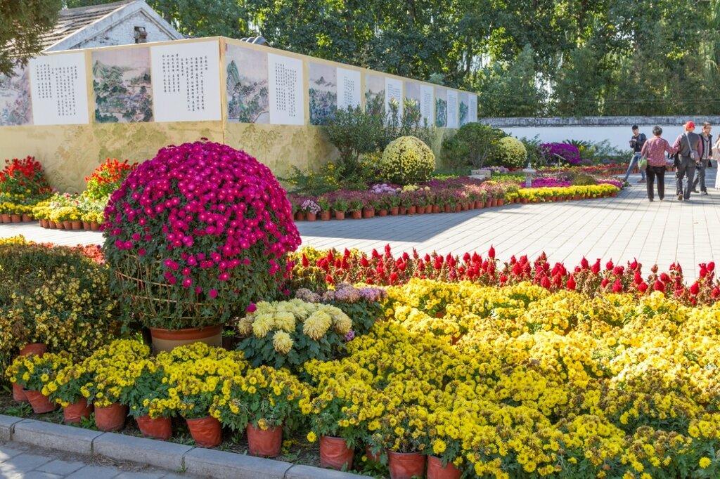 Выставка хризантем, история парка Юаньминъюань