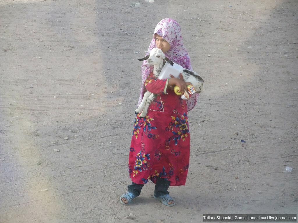 Луксор нетуристический. Египет