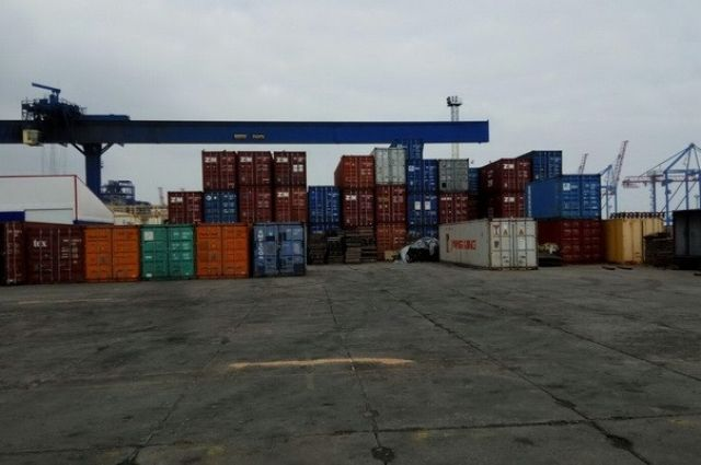 ВОдесском порту СБУ перекрыла канал незаконного экспорта древесины вЕвропу