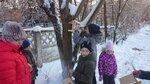 Акция Накорми птиц в Кпинском благочинии учащиеся Клинской православной классической гимназии София, учредителем которой является Скорбященский храм, под руководством семиклассников развешивали на территории гимназии кормушки для птиц