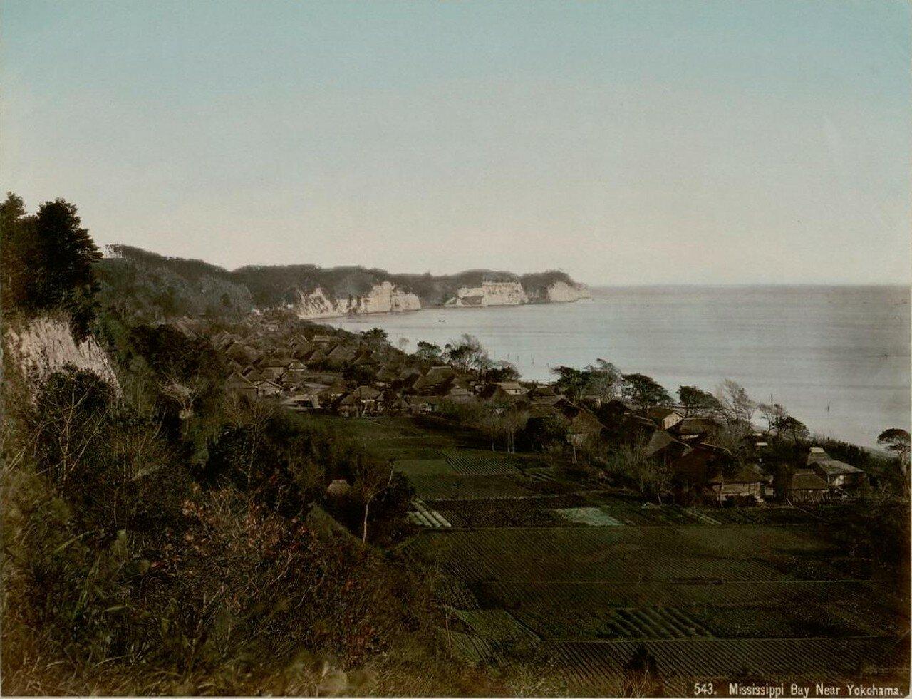 Иокогама. Залив Миссиссиппи