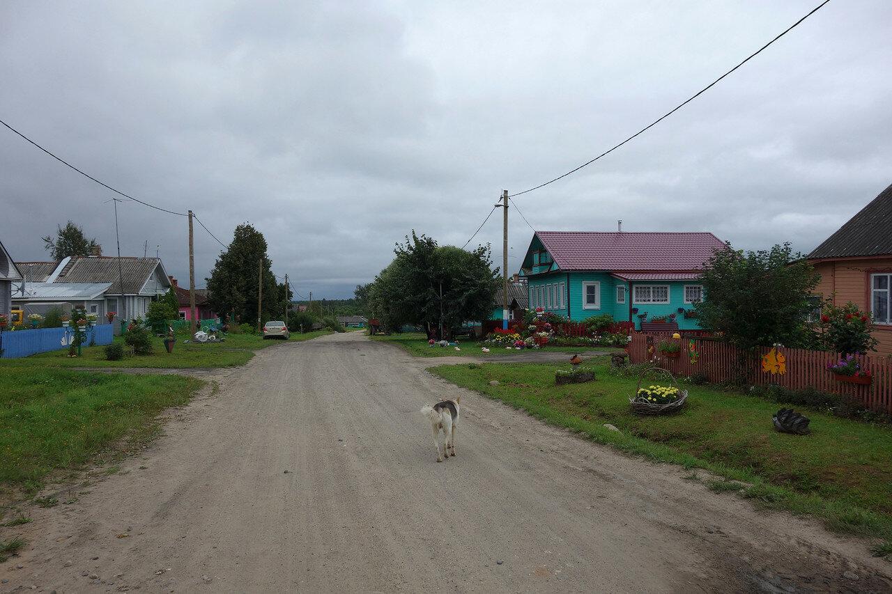 деревня Березник