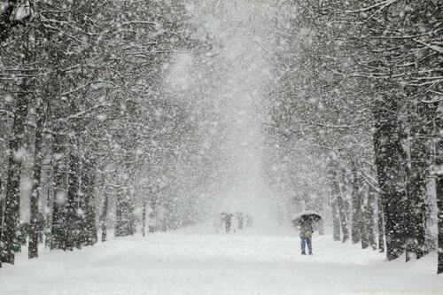 Снегопады и морозы в Молдове продолжатся с новой недели