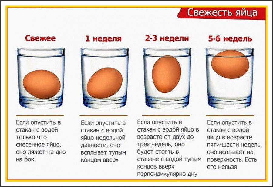 как проверить срок годности яиц