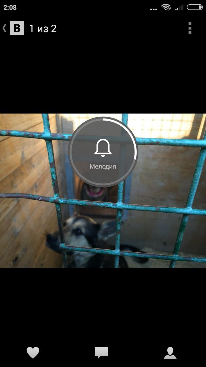 Screenshot_2016-05-03-02-08-46_com.vkontakte.android.png