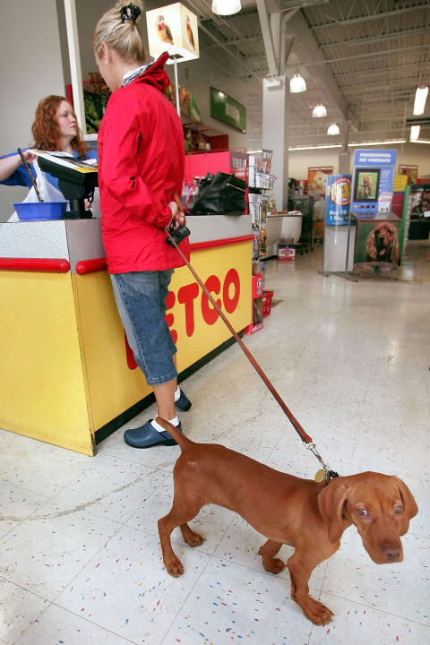 Пользователь samovolochka работал в магазине Petco и рассказывает, что перед Черной пятницей менедже
