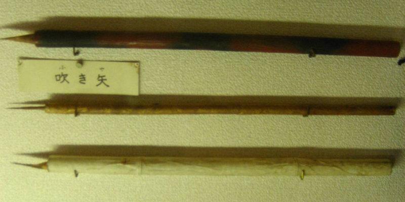 Этими духовыми ружьями воины-ниндзя пользовались при атаке. Наконечники дротиков были отравлены