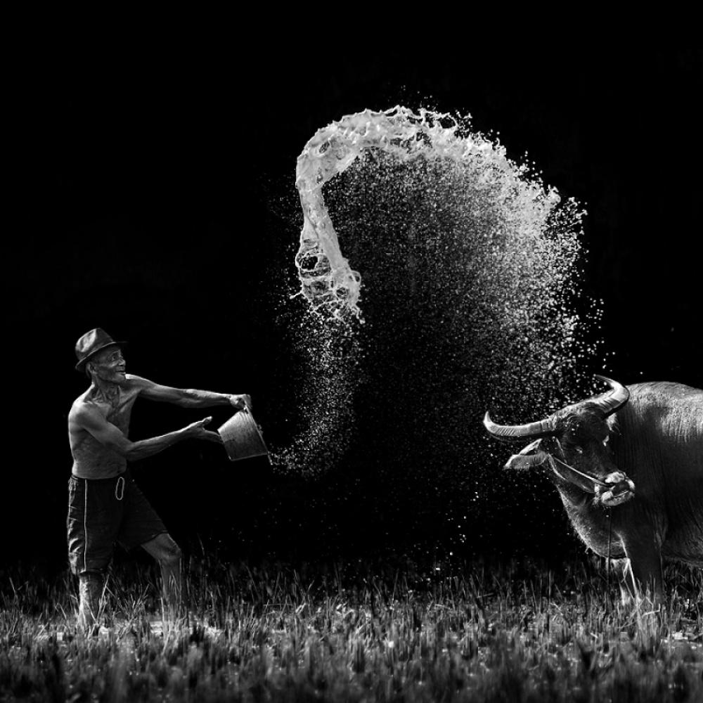 Фото: Ario Wibisono