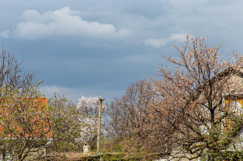 Апрельский вид на соседние дворы