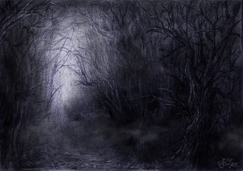dark_forest_by_rosenberry-d32cekm.jpg