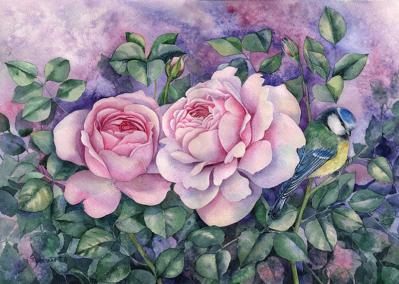 Две розовые розы..jpg