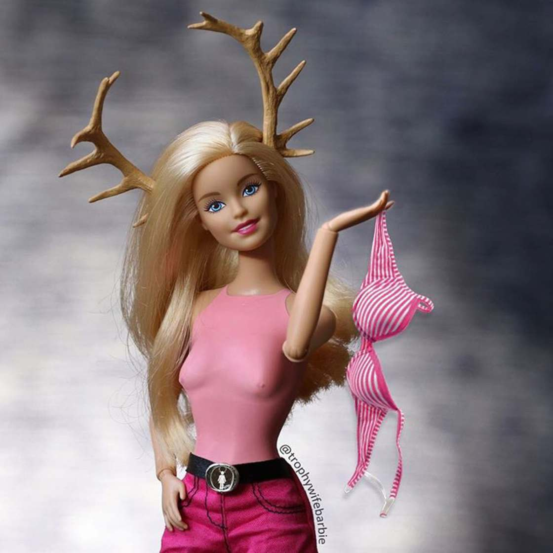 Trophy Wife Barbie - La vie debridee d'une Barbie sur Instagram