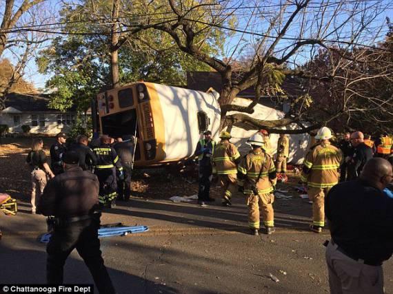 Школьный автобус влетел в дерево: погибли 12 детей