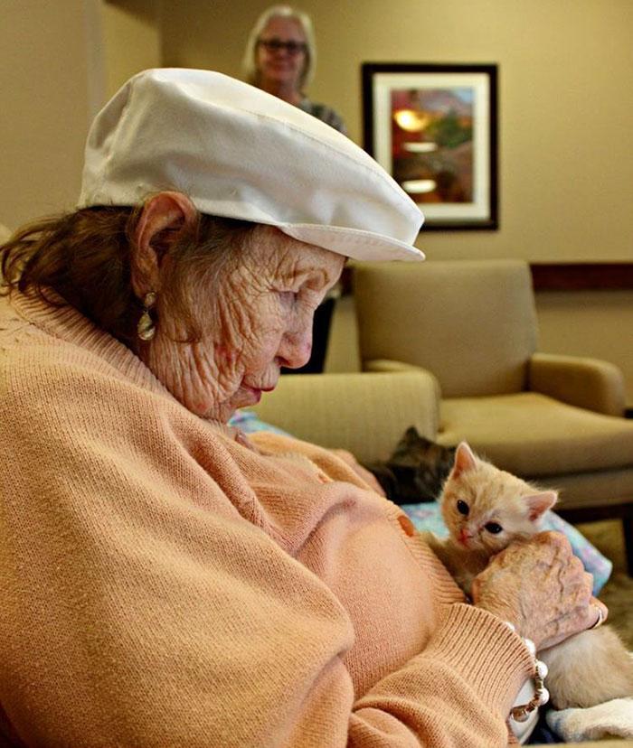 Инициатива оказалась успешной: общее состояние и котят, и пожилых людей значительно улучшилось.