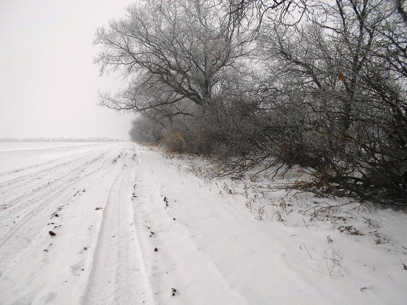 У леса и поля ... В походе декабрьском, снежно-туманном,