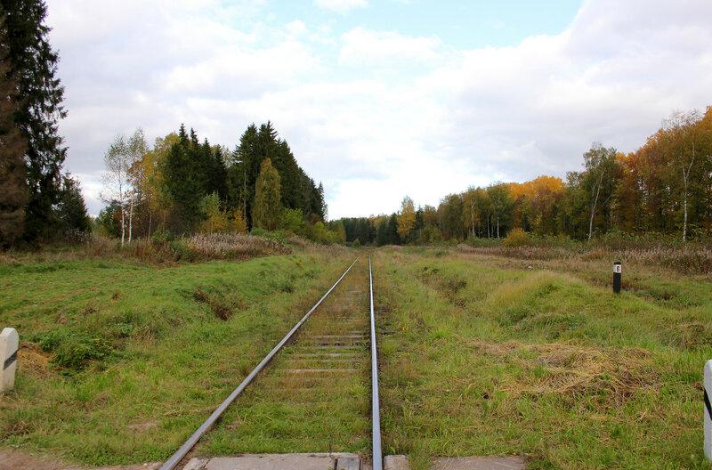 Неизвестный переезд на перегоне Овинище-2 - Весьегонск