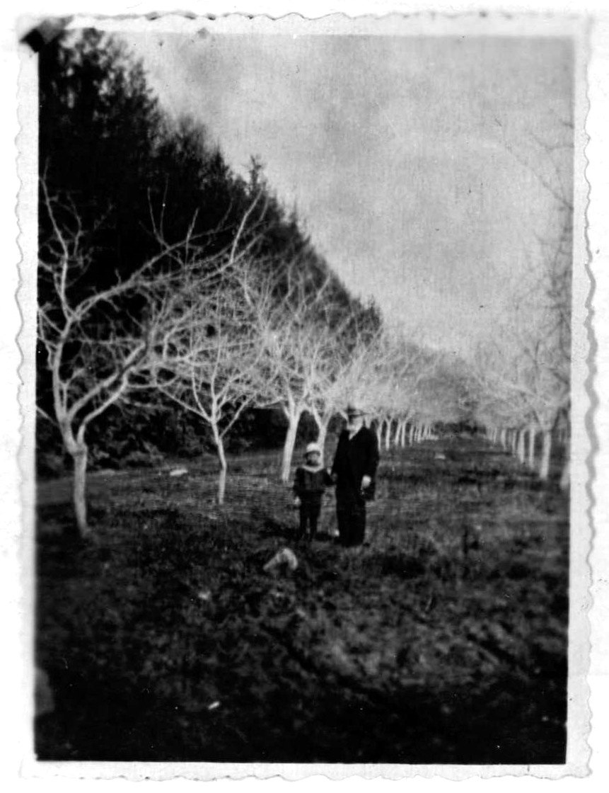 Окрестности Луги. д. Домкино, Глазенап С.П. с сыном Михаилом в яблоневом саду