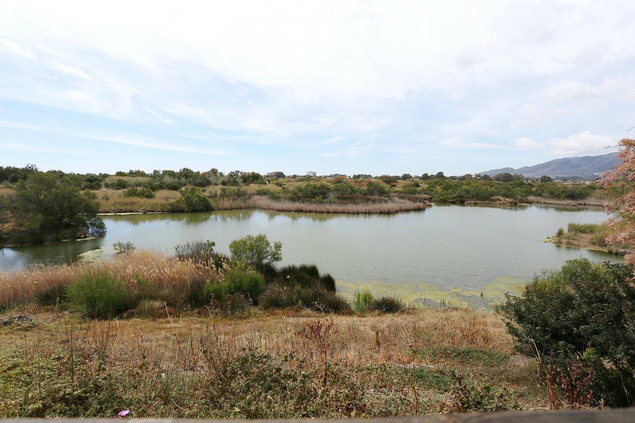 Малага. Природный парк в дельте Гвадалорсе (Paraje Natural Lagunas del Guadalhorce)