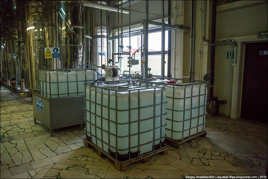 Сбраживание сусла начинается при введении в осахаренную массу производственных дрожжей. Мальтоза рас