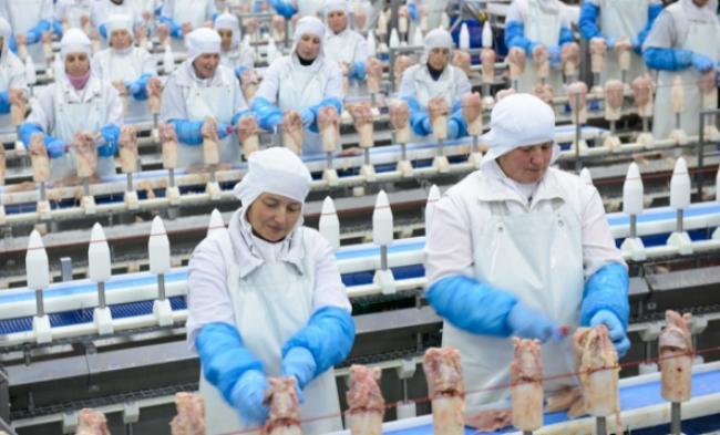 Агрохолдинг Косюка получил 8 миллионов долларов убытков