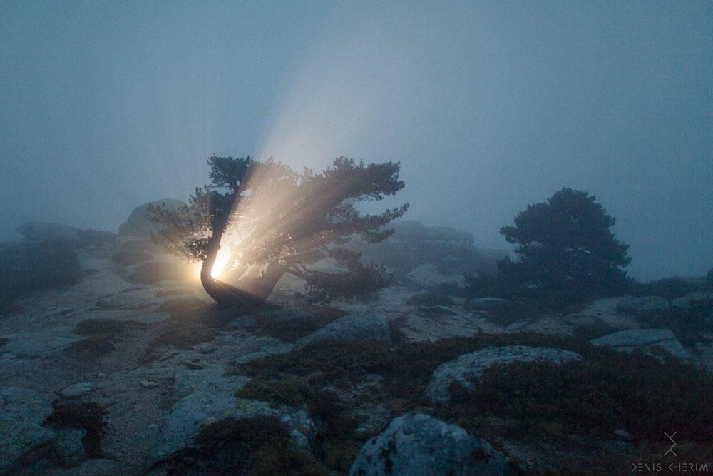 Photographer Denis Cherim's 'Coincidence Project' Explores Uncanny Moments of Synchronicity