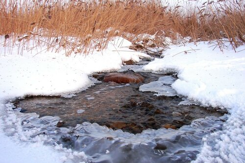 Зима 2010 004 ... фотограф Александр Улисский