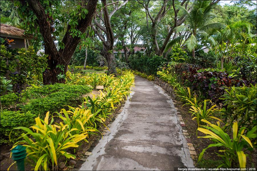 Кругосветка, день 10, Фиджи