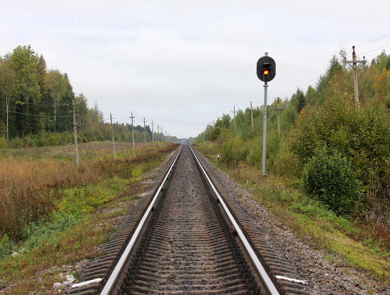 Светофор ПН перед станцией Земцы со стороны Подсосенки