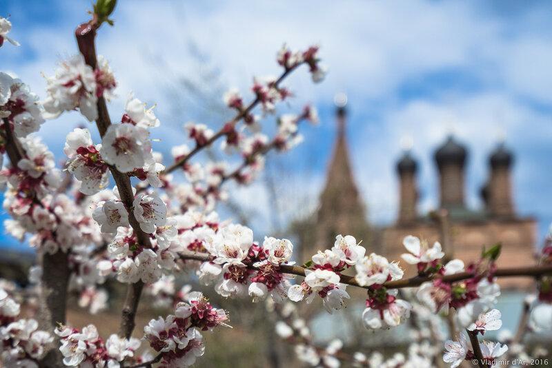 Крутицы. Весна.