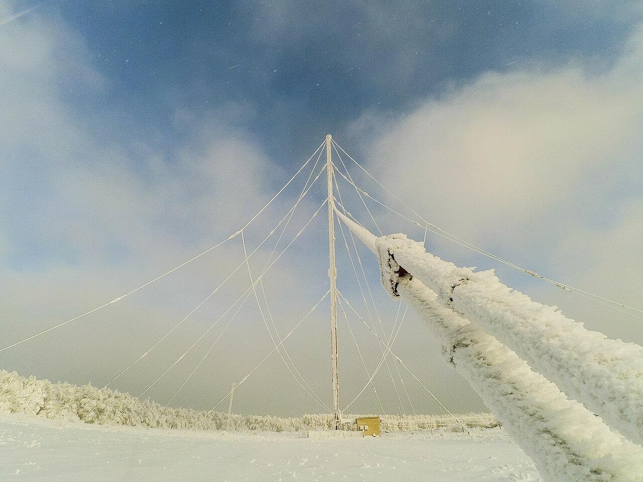 Немного снежного, с лыжных прогулок. фото 2